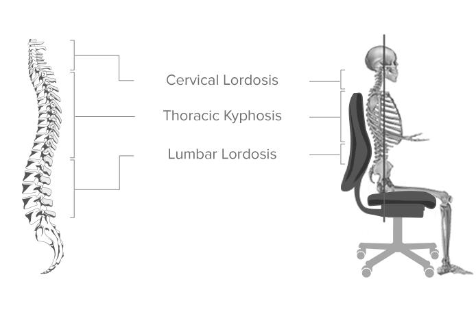 Spine Desk Chair. Shop Neutral Posture E Series Ergonomic