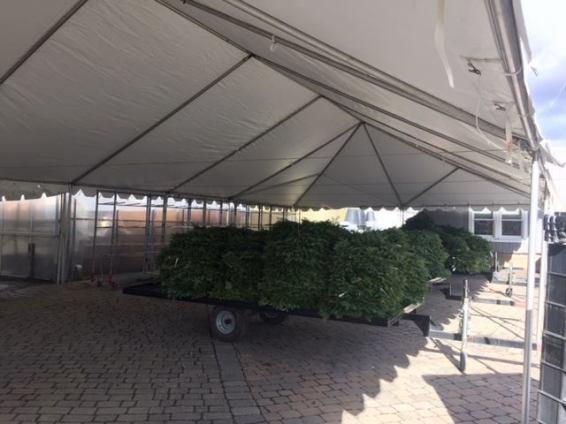 Christmas Sale Tents Atlantic Tent