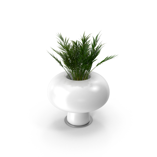 Boyo Vase with Plant PNG Images  PSDs for Download