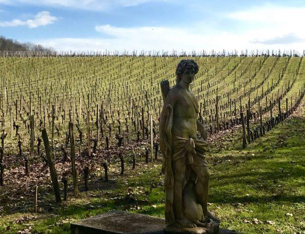 bordeaux-wine-tours-1