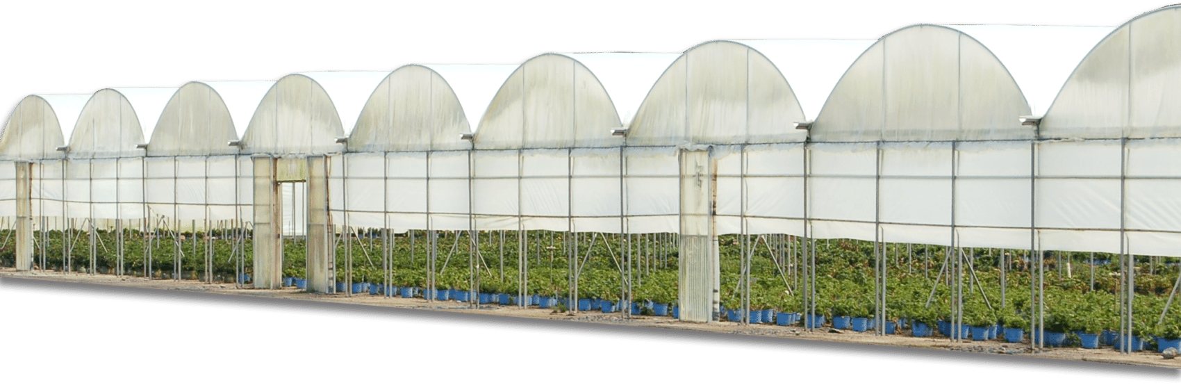 Greenhouses for Commercial, Educational & Hobby- Atlas Manufacturing ...