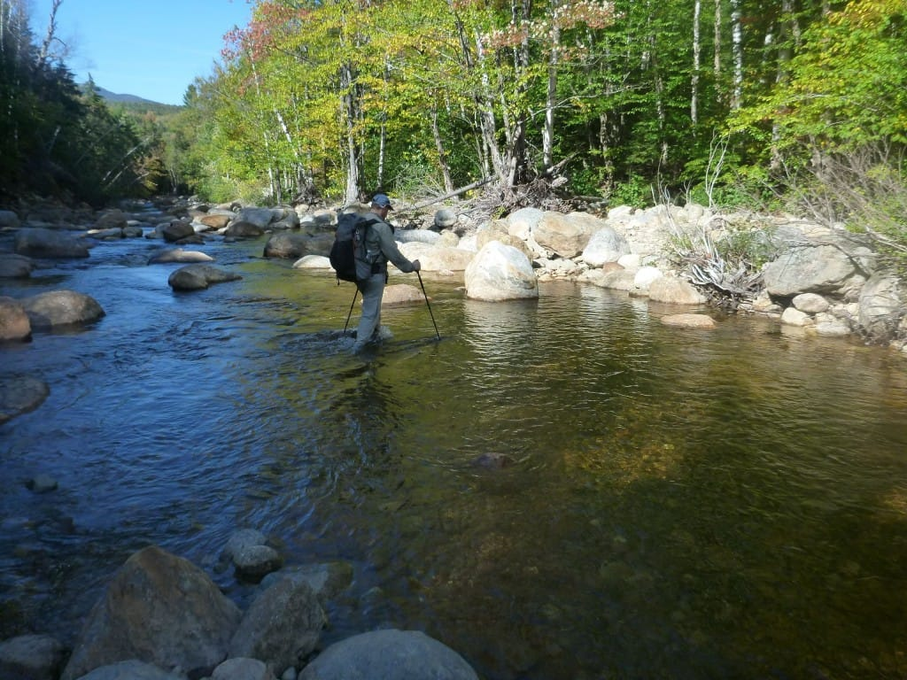 A hiker fords a wide river that runs through a green forest in the White Mountains National Forest.