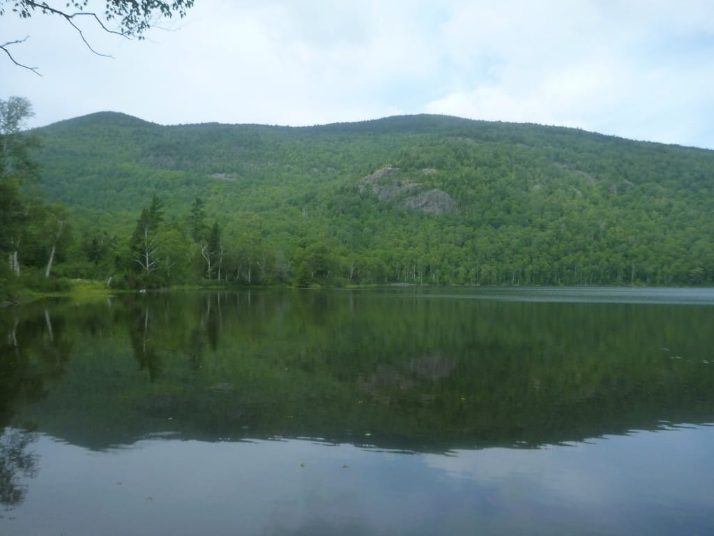 A lake reflects a green mountain.