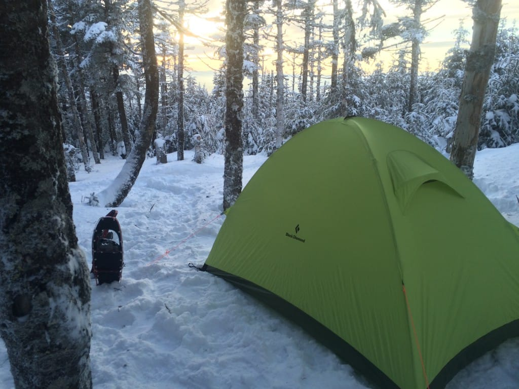 A green tent sits in a snowy forest.