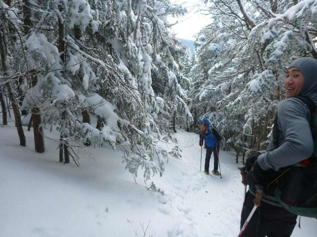 A group of hikers walk down a trail through a snowy forest.