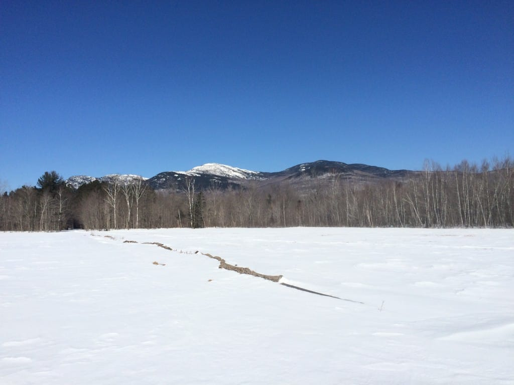 Blue skies and a snowy meadow showcase a distant mountain range.