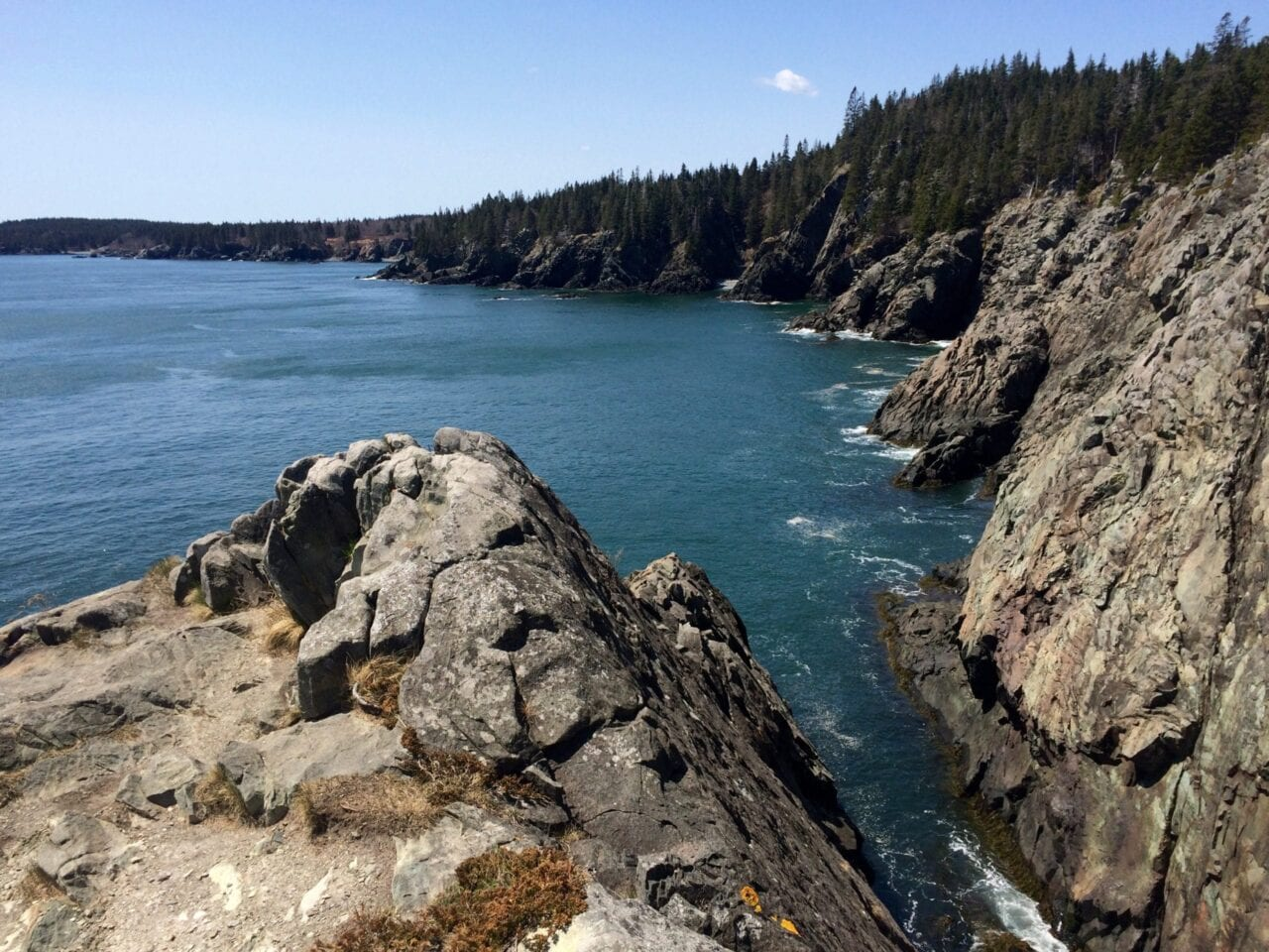Rocky coastal cliffs give way to blue ocean water and a dense forest.