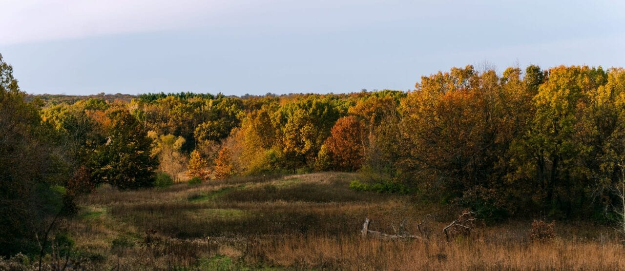 The Ice Age Trail winds through a meadow towards a deciduous forest of Autumn colors.