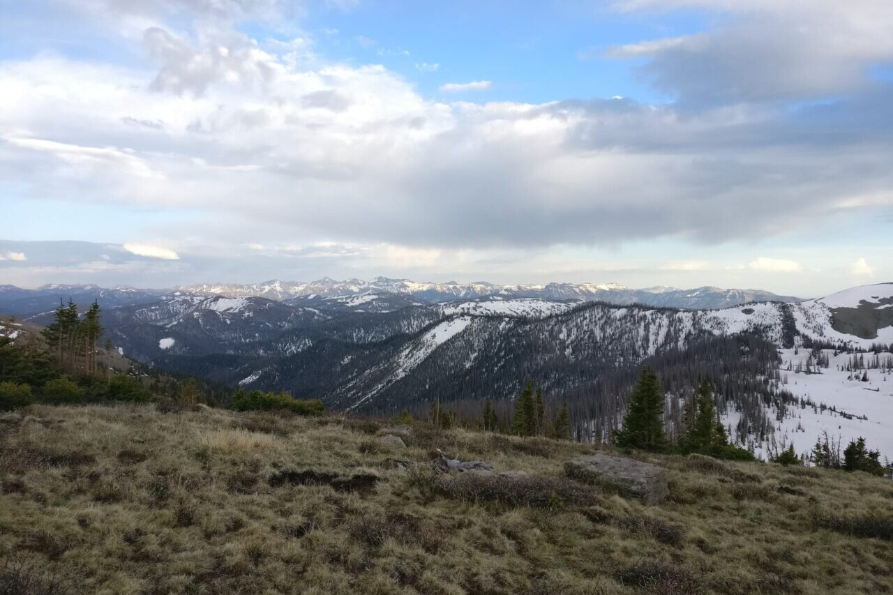 A view from a high meadow shows distant snowy mountains.