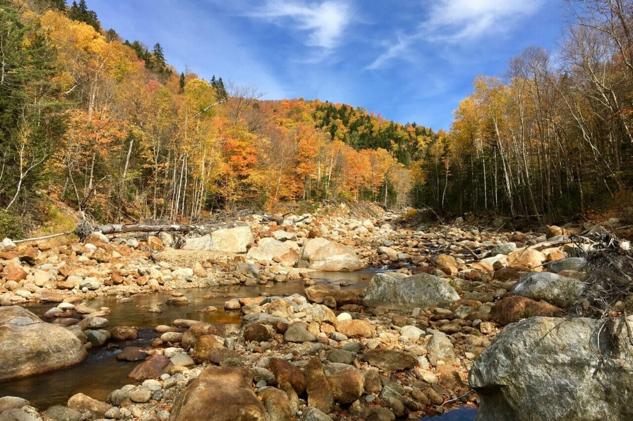 A rocky river bed winds through bright fall foliage.