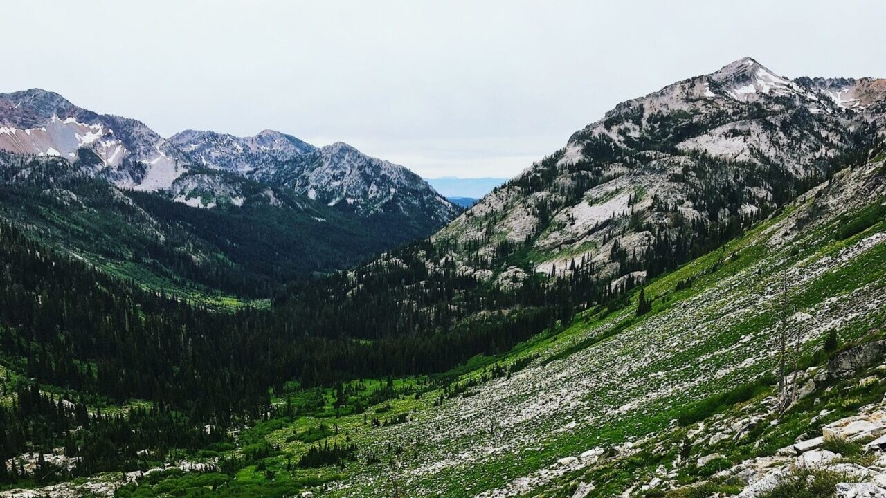 A green meadow and valley descends through an evergreen forest nestled between rocky mountains.