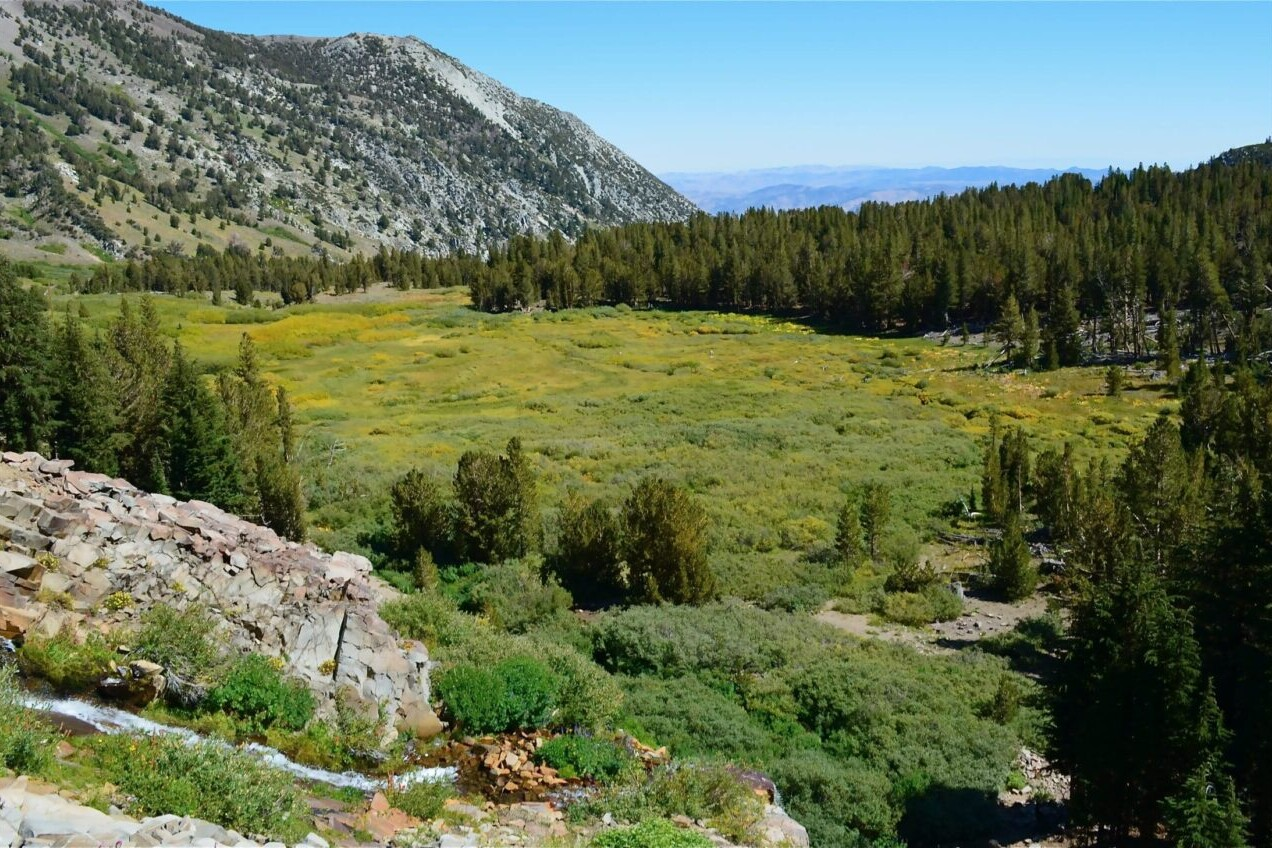 A view overlooks a green meadow and nearby rocky mountain.