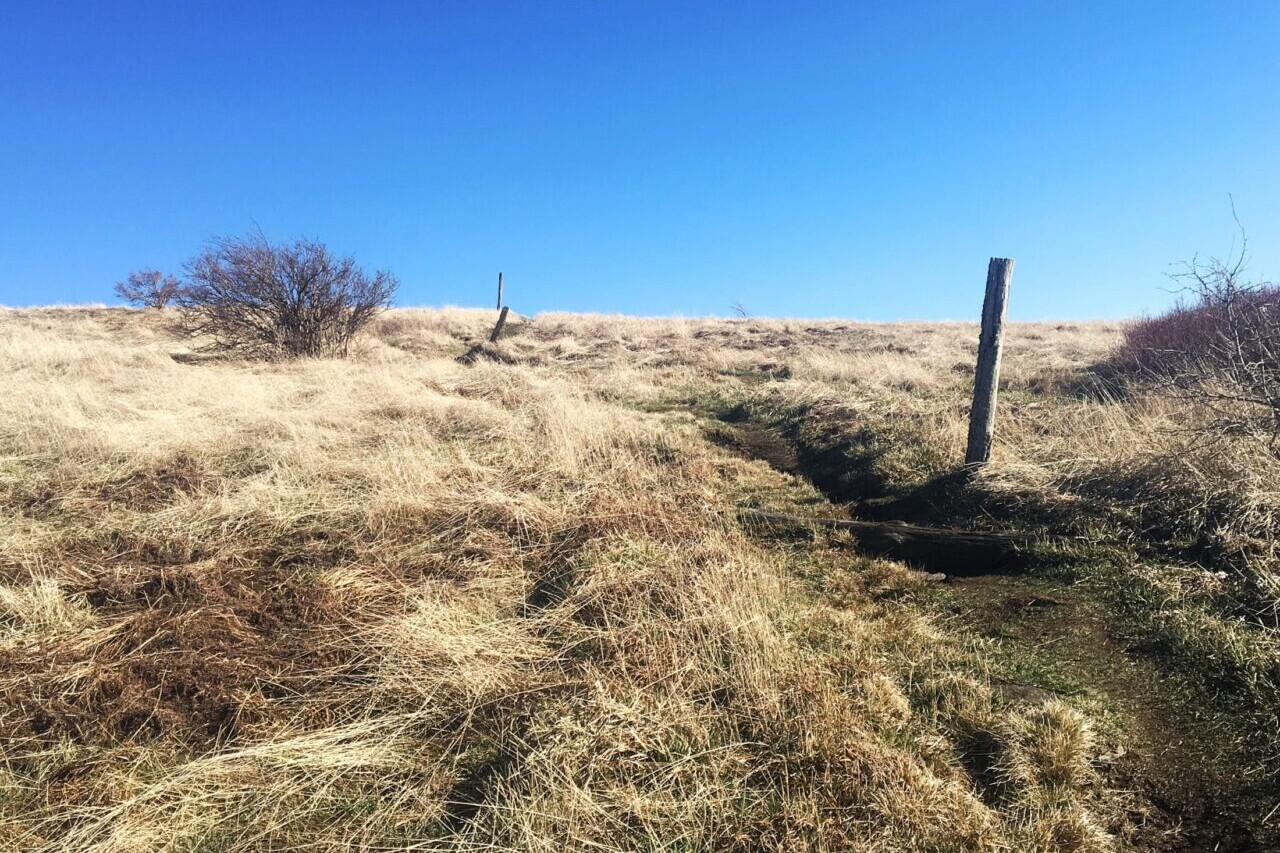 A path leads up and over a grassy golden bald.