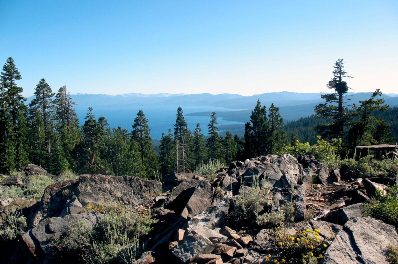 A view from a rocky outcropping on the Tahoe Rim Trail looks over Lake Tahoe through tall evergreens.