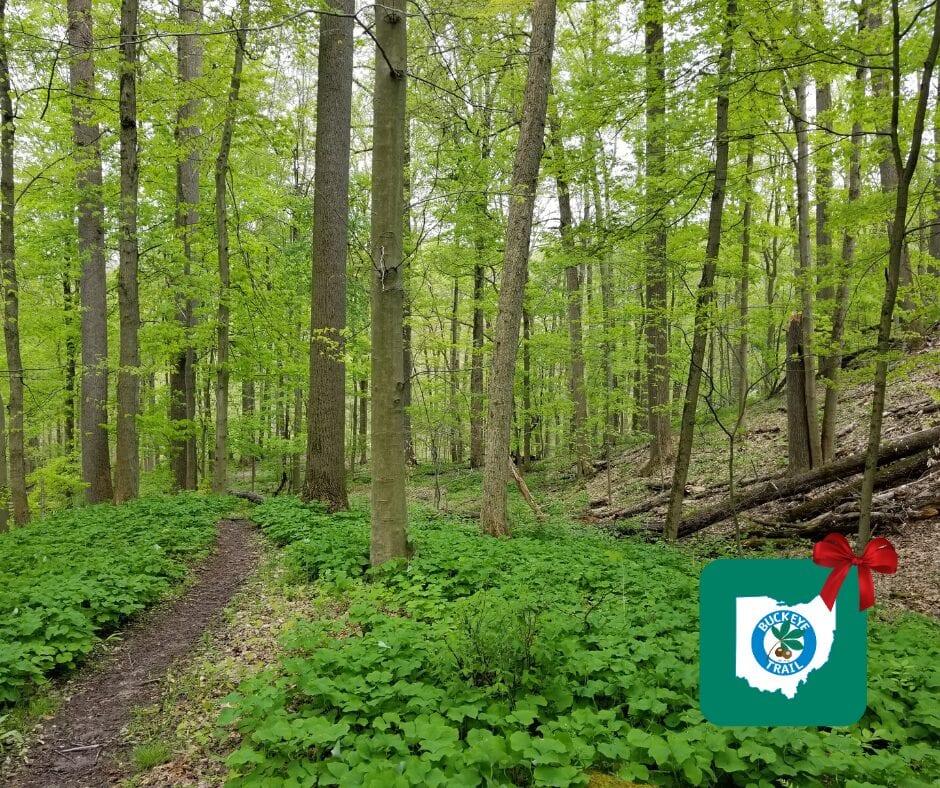 Buckeye Trail Gift Guide