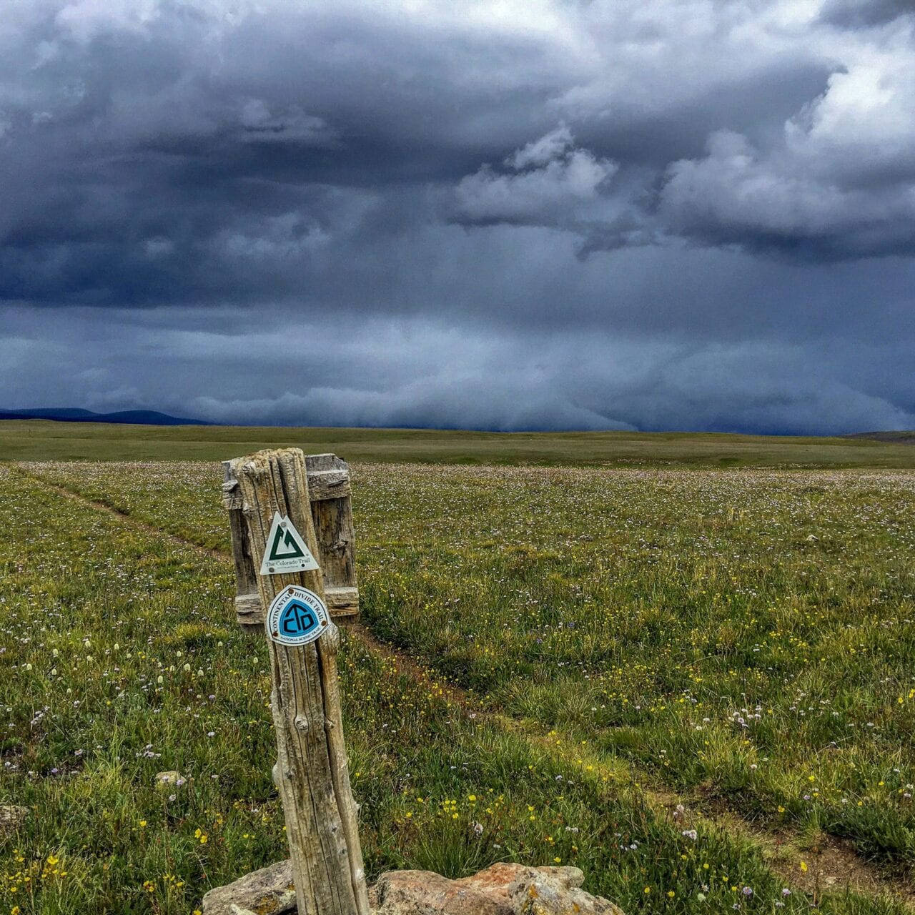 A view of the trail with the Colorado Trail sign post.