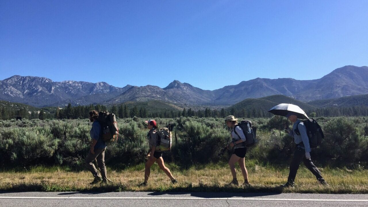 A group of hikers walking in a line along a road.