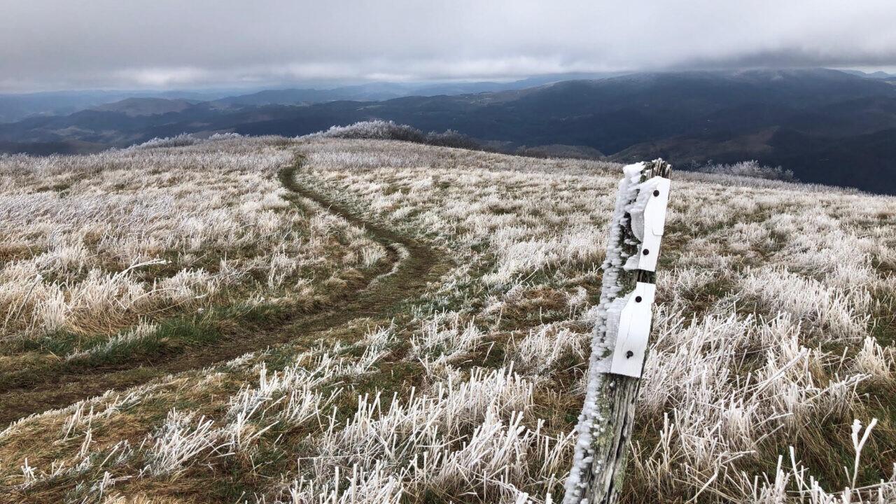 A view of a trail through dead grass on a hill.