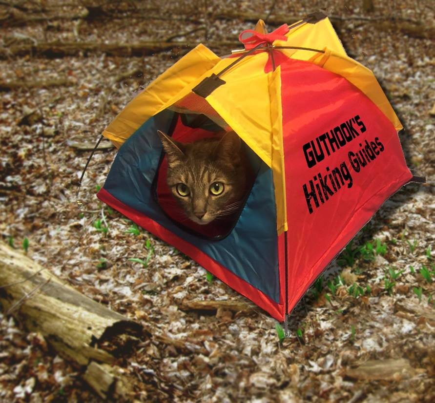 Silver the cat in her Guthook Guides tent