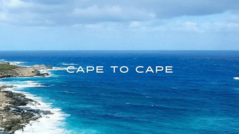 A green coast meets a blue ocean on Australia's coast.