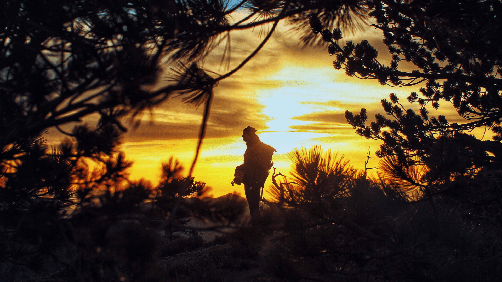 hiker standing in front of the sunset