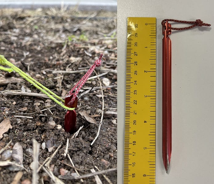 tent stake In the ground and the same tent stake being measured next to a ruler