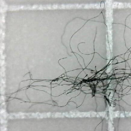 fibers under microscope