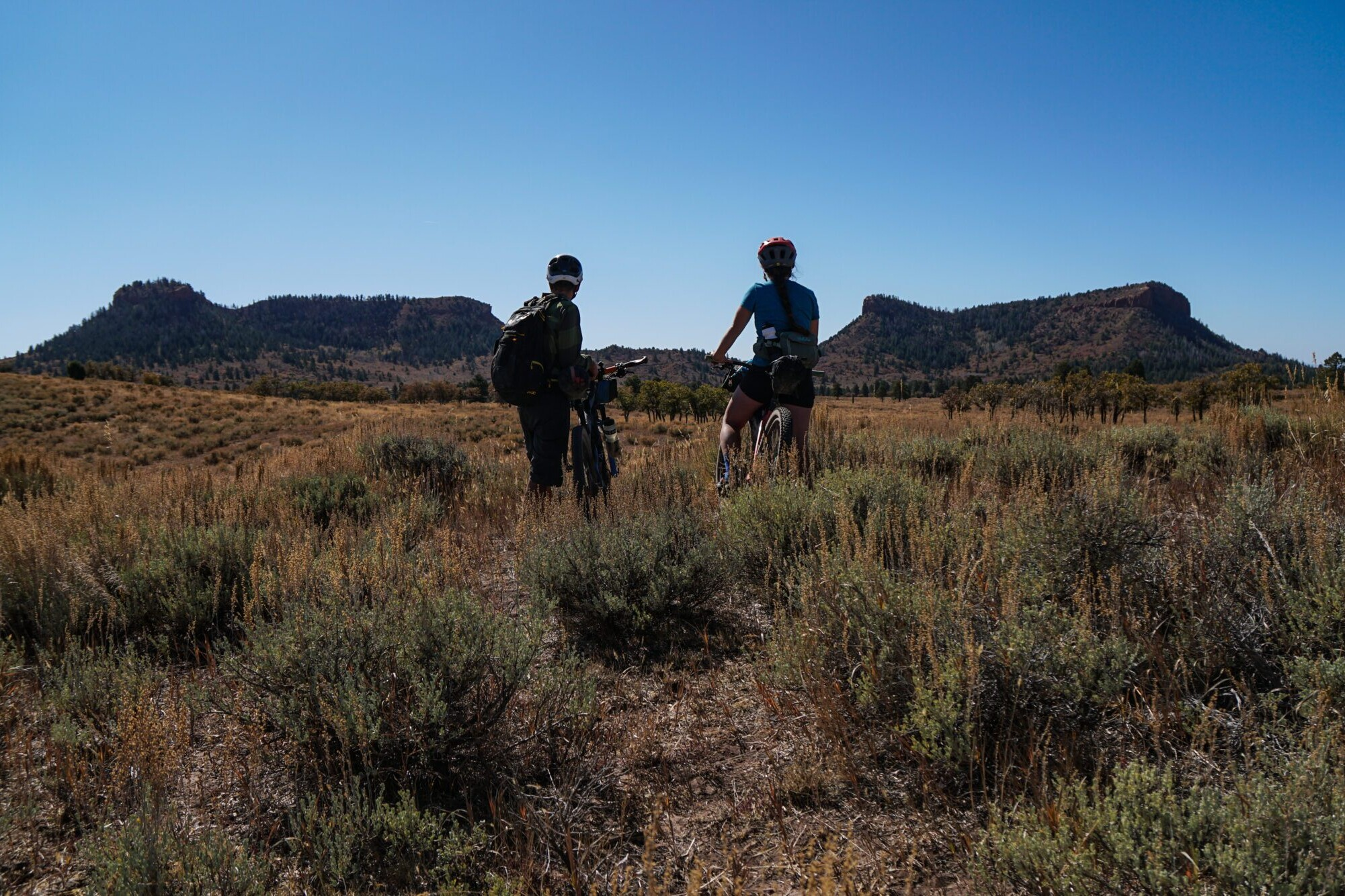 two bike packers standing on trail with their bikes