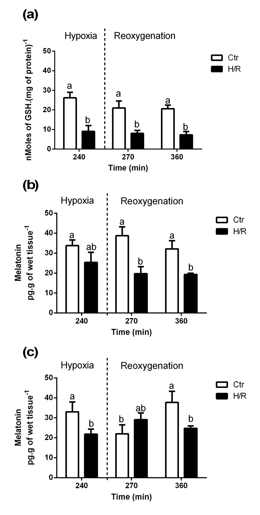 Effects of hypoxia/reoxygenation in the antioxidant system