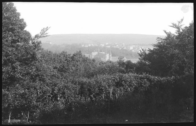 Widok z Pachołka na Oliwę, 1903 r. Źródło: Deutsche Fotothek