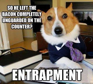 bacon stealer