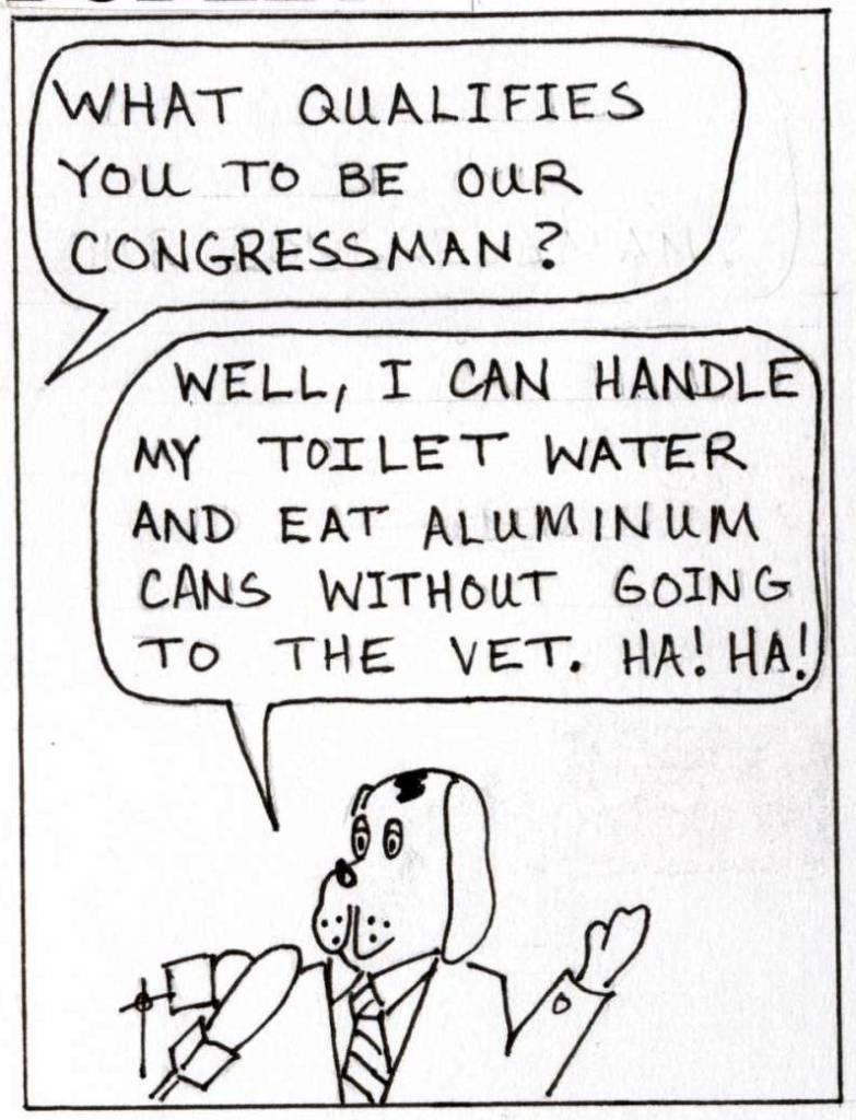 Dog runs for Congress