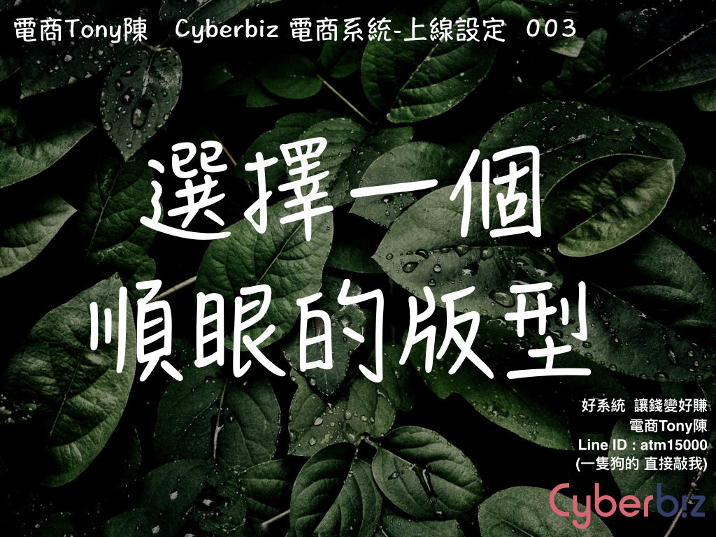 電商Tony陳cyberbiz版型