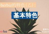 Cyberbiz特色(乙):基本特色(真的很基本)