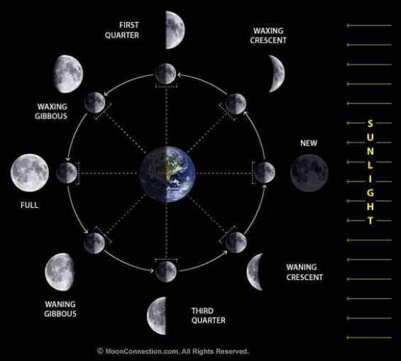 Kalkulator: U kojoj ste lunarnoj fazi rođeni?