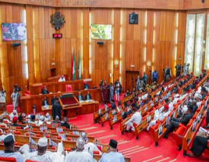 Covid-19: Controversial bill surfaces at National Assembly