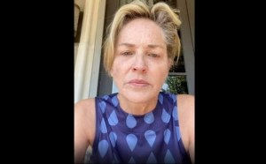 Sharon Stone calls President Trump 'killer,' says sister and brother-in-law 'fighting for their lives' after deaths of grandmother and godmother