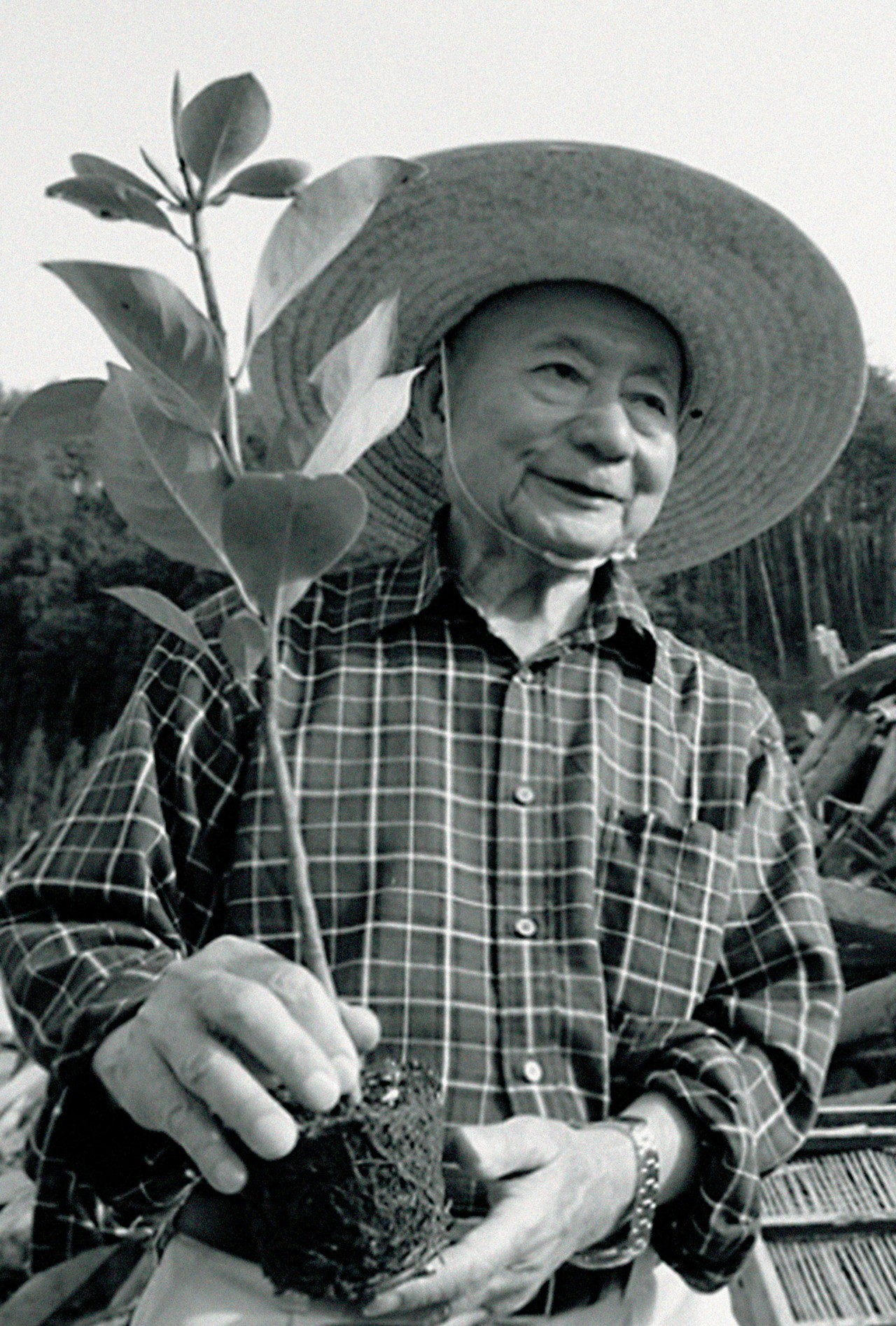The philosophy behind restoring earth's balance with native trees. The Forestkeeper Dr Akira Miyawaki Atmos