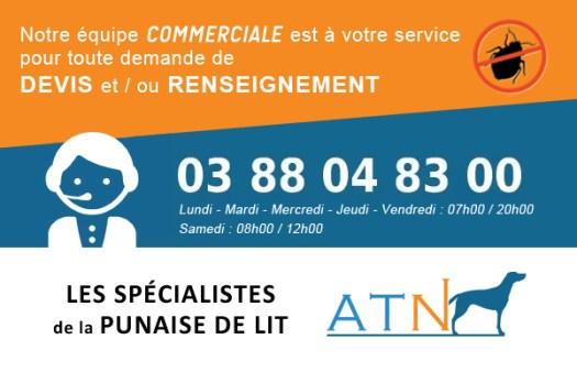 Equipe commerciale ATN détection canine punaise de lit - France - Paris - Strasbourg - Lyon - Bordeaux