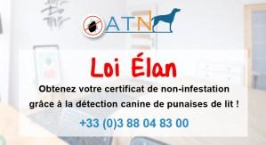 actu-loi-elan-2019-atn-detection-canine-punaises-de-lit