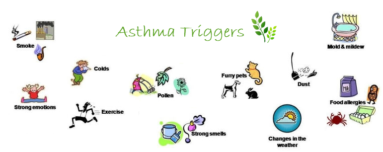 Did You Know that You Can Develop Allergies even When You Didn't Have them as a Child? (5/5)