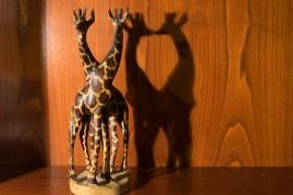004_M.Matricial_girafa