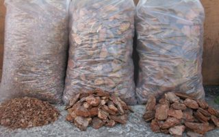 Сосновая кора для мульчирования почвы
