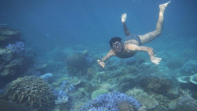 Snorkel en las Islas Fiji