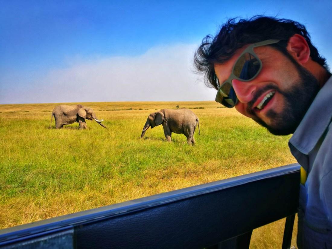 JP y elefantes
