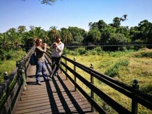Safari por Kenia y Tanzania