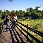 Viaje a Kenia y Tanzania: el mejor safari del mundo