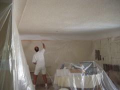 ceilingman1