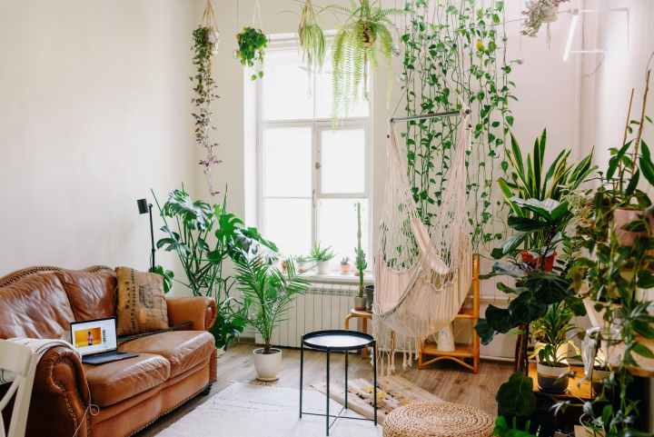 4 Ways Your Home Decor Can Influence Your Health