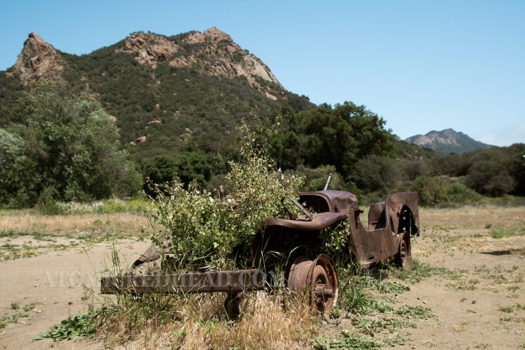A rusted out Jeep that was used in the show, now with a bush growing through the area where the engine once was.